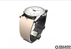 TwinBand Watch Concept